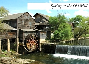 Pigeon Forge Area
